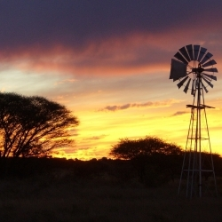"""""""L'heure de la justice a sonné"""" : les fermiers blancs sud-africains pourraient être expropriés sans compensation"""
