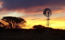 « L'heure de la justice a sonné » : les fermiers blancs sud-africains pourraient être expropriés sans compensation