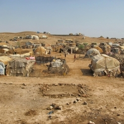 Le nouveau rapport de la Commission d'enquête de l'ONU révèle des crimes flagrants contre l'humanité en Érythrée