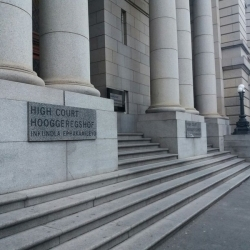 Afrique du Sud : Déclaration d'inconstitutionnalité d'une partie de la réglementation sur les manifestations